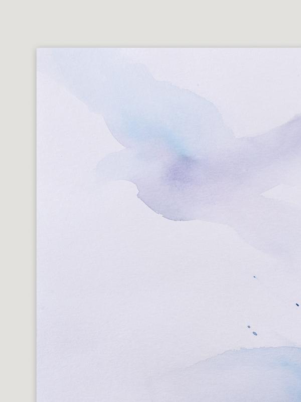 Birds LIV-2