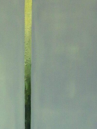 Linia światła (5)